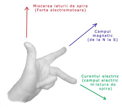 regula mainii drepte